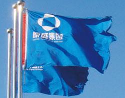 SYI-Logo